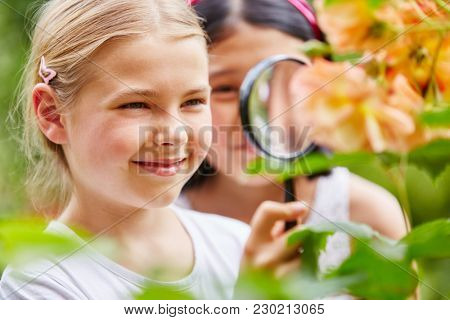 Children explore nature in garden using loupe with curiosity