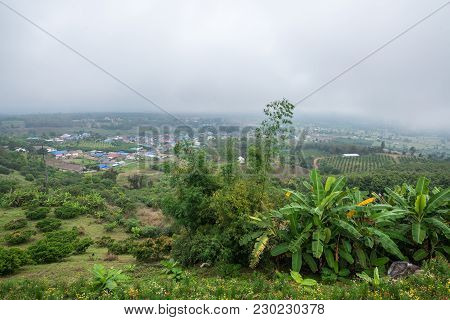 Banana Agriculture On The Village Mountain In Forest With Mist And Cloudy Sky, Traveling In Thailand