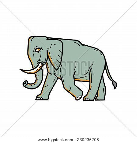 Mono Line Illustration Of An African Elephant,  African Bush Or Forest Elephant Walking Viewed From