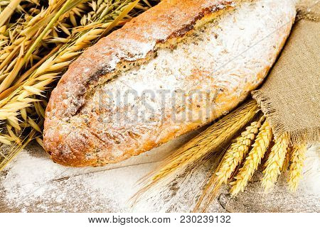 White Bread With Spikelets Of Wheat, Oats And Rye