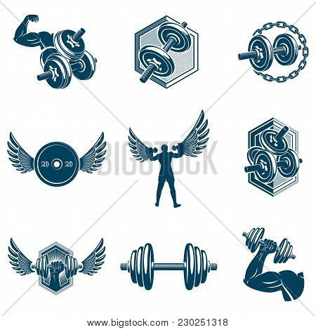 Vector Power Lifting Theme Illustrations Collection Made Using Dumbbells And Disc Weights Sport Equi