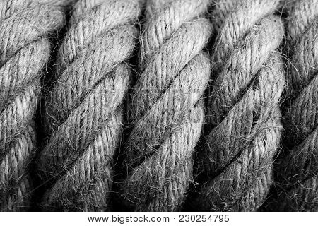 Gallows Noose Knot - Black And White Image
