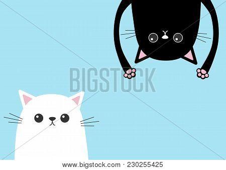 Black Funny Cat Head Silhouette Hanging Upside Down. White Kitten Head Face. Eyes, Teeth, Tongue, Ha