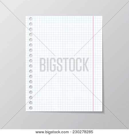 White Sheet Of Paper School Notebook With Blue Line Book Page Background