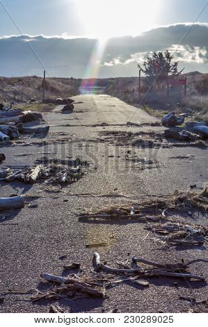 Sunny Cluttered Road Through Dry Beach Landscape
