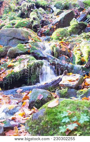 A Small Mountain River. Forest Source Of Water.