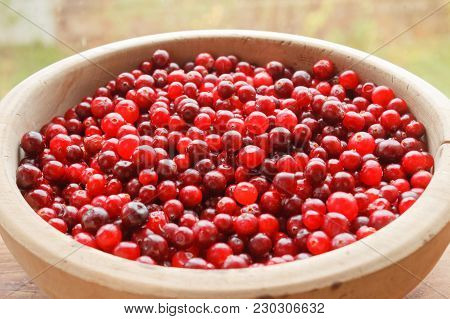 Red Bilberry Fruits Close-up In A Wooden Big Bowl