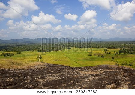 Sri Lankan Scenic Landscape Viewed From A Volcanic Rock Formation In Wasgamuwa National Park With Wo