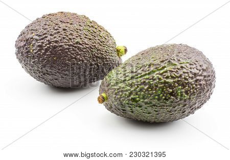 Two Avocado Isolated On White Background Green Brown Alligator Pear