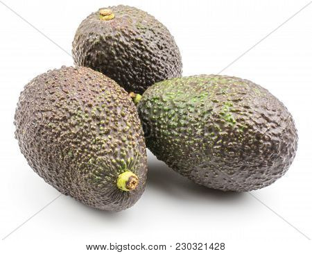 Green Brown Avocado Isolated On White Background Ripe Three Alligator Pears
