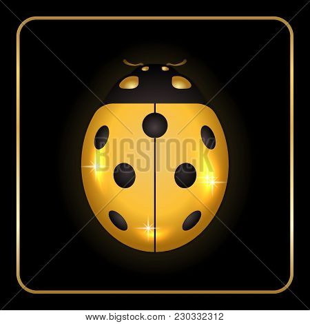 Ladybug Gold Insect Small Icon. Golden Metal Lady Bug Animal Sign, Isolated On Black Background. 3d