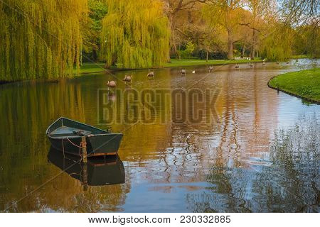 Rowing Boat In Kamper Stadspark On A Beautiful Spring Evening With Golden Light. In The Water A Row