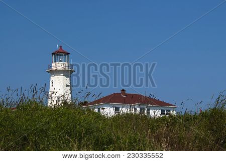 Weathered Machias Seal Island Lighthouse On A Warm Summer Day Surrounded By Vegetation.