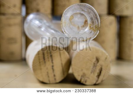 Accessories For Home-made Wine And Alcohol Products. Dirty Fermentation Tube For The Fermented Wine