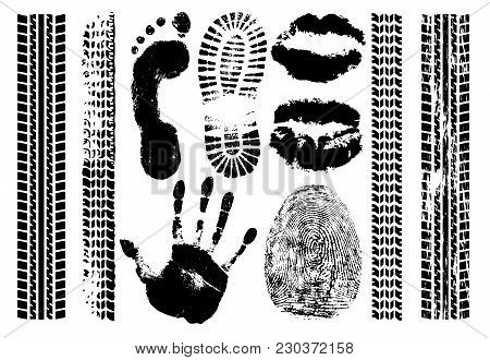 Imprint Set Evidence. Handprint, Footprint, Fingerprint, Print Of The Lips, Tire Tracks. Isolated Si