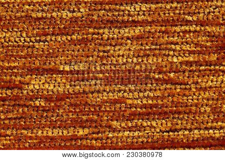 Saturated Golden Textile Background. High Resolution Photo.