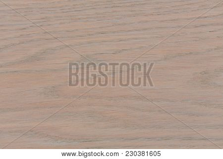 Bright Wood Texture For Your Background. Hi Res Photo.