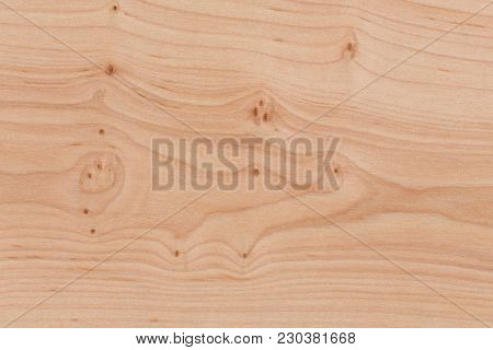Wooden Surface With Bright Texture. Pine Pattern. Hi Res Photo.