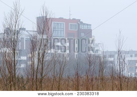 City - A Modern Housing Estate And Wild Nature