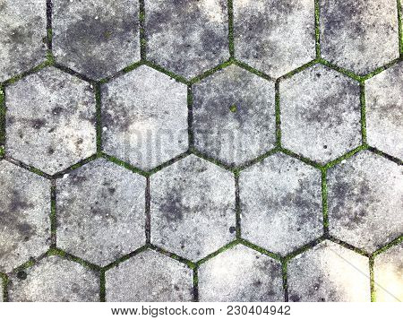 Gray Figured Pavement With Scuffs. Old Gray Paving Slabs-green Grass Grows Among The Tiles. Backgrou