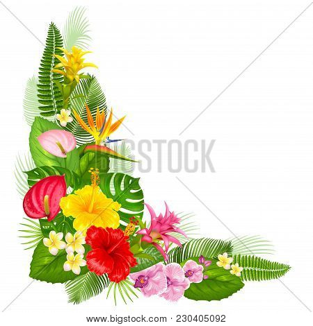 Summer Design Element For Banner Or Flyer With Tropical  Exotic Leaves And Flowers. Corner Arrangeme