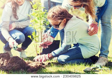 volunteering, charity, people and ecology concept - group of happy volunteers planting treel in park