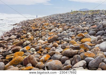 Moss Covered Rocks On A Rough Shoreline In Cape Town