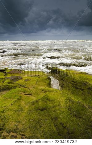 Beautiful Sea View, Wave Hitting The Rock Covered By Vibrant Green Mossy And Algae.dramatic Cloudy S