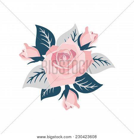 Flower Bouquet Floral Bunch Vector Boho Design Object Element. Peach Creamy Pale Pink Anemone Poppy