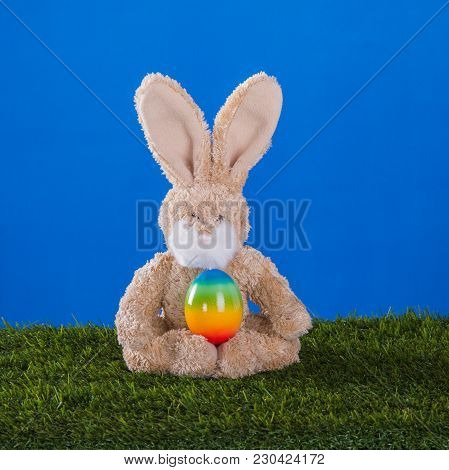 Yoga Concept.dexterous, Rabbit And Him Easter Egg  On The Grass
