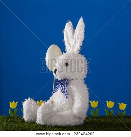 Easter Composition With Capable White Hare, Tulips And Decorative Egg On The Vivid Blue Background.