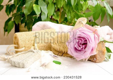 Sea Salt Crystals For Bathroom, Pumice, Luff,  Rose Flower, Body Brush, Shells, Handmade Soap With T