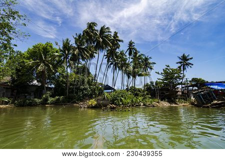 Beautiful Nature Of Terengganu Village Near The River With Blue Sky Background At Sunny Day