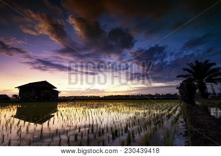 Silhouette Image Of Dilapidated Abandon House In The Middle Of Paddy Field Over Beautiful Sunrise Ba