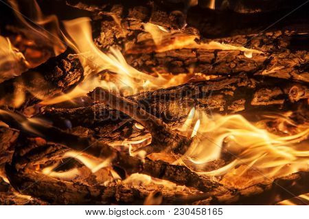 Shot Of Burning Firewood In Fireplace