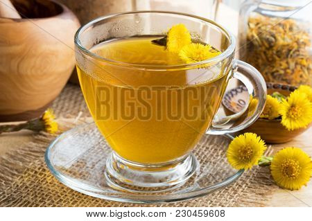 Fresh Coltsfoot (tussilago Farfara) Tea With Coltsfoot Flowers On A Table