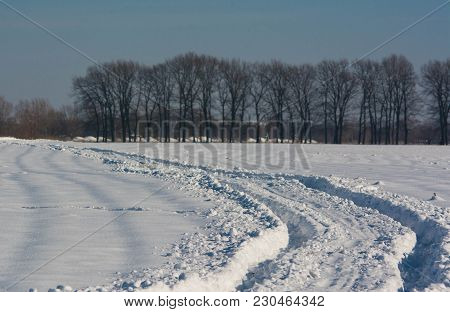 Car Track On The Snow Field, Off-road, Cold And Sunny Weather, Row Of Trees And Clear Blue Sky On Th