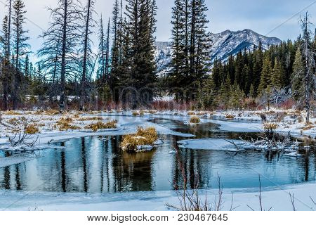 Mount Loretta Ponds, Bow Valley Wilderness Area, Alberta, Canada
