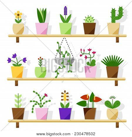 Indoor Potted Plants Isolated On White. Vector Set Green Plant In Pot, Illustration Of Flowerpot Blo