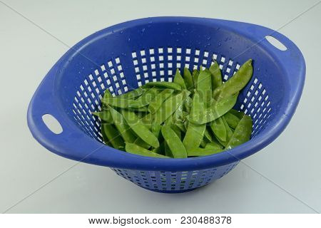 Freshly Rinsed Snap Peas Draining In Blue Colander On White Wooden Table
