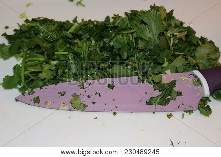 Fresh Chopped Coriander. A Must Have In Many Mexican Dishes