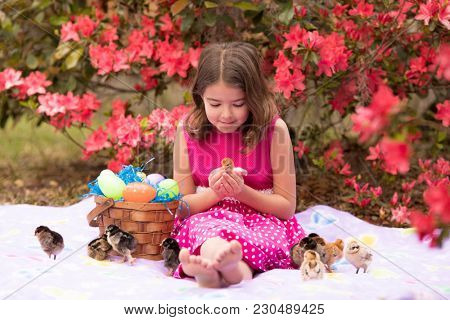 Little girl with easter basket playing with baby chicks.