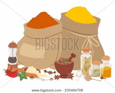 Spices Condiments And Herbs Decorative Elements And Icons. Seeds Fruit Flower Buds Leaves Blends And
