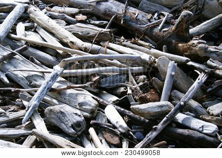 Image Of A Pile Of Driftwood Washed Up Onto The Beach.