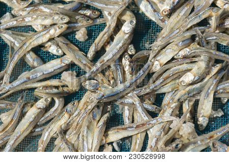 Salted Fish Sea Sun Bath And Dried Food Iodine Salt