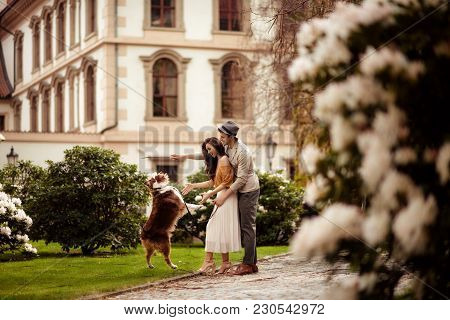 Female And Male Couple Have Walk Outdoor With Their Favourite Dog, Train It, Stroll In Open Air Acro