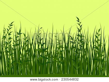 Seamless Horizontal Background, Nature, Landscape With Fresh Green Grass And Leaves On Yellow, Tile