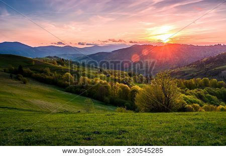 Pink Sunset Over The Mountains In Springtime. Gorgeous Carpathian Countryside. Beautiful Rural Scene