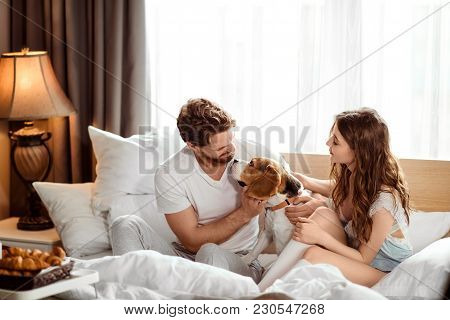 Positive Female And Male Have Fun Together With Their Dog In Bed, Enjoy Calm Domestic Atmosphere And