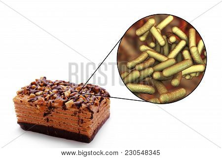 Shigellosis, Food Borne Infections, Medical Concept, 3d Illustration Showing Cake As A Common Source